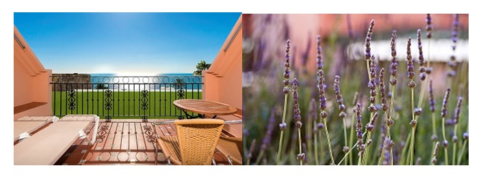 Pollution Free hotel Fuerte Marbella