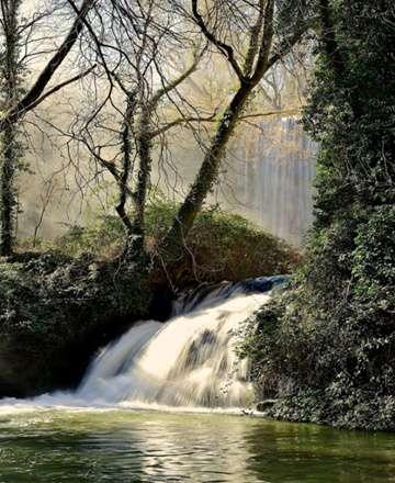 Monasterio de Piedra, Baño de Diana y Caprichosa