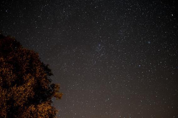 Paseo por las estrellas