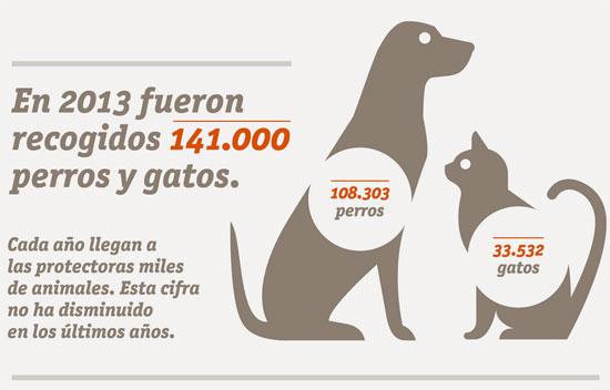 Infografía Estudio de Abandono y Adopción 2014