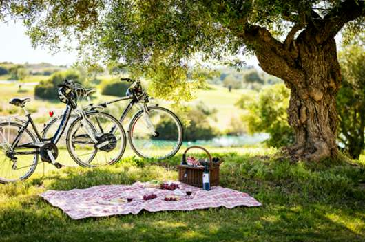Hay otra manera de vivir y respirar el aire fresco, el glamping.