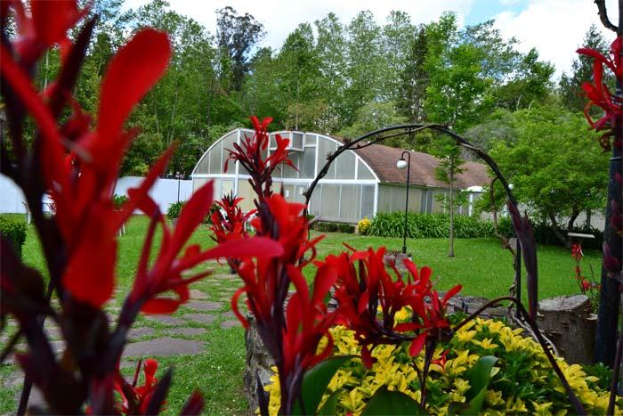Jardín y Piscina Hotel Termas