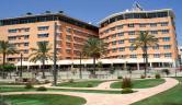 Mini golf frente al hotel Hotel Puerto Juan Montiel