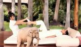 Masajes Hotel Botánico