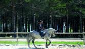 Equitación Oca Nova Manzaneda