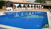 Piscina Hotel los Periquitos