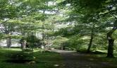Parque Balneario Caldas de Besaya