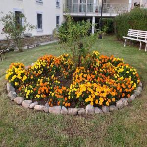 Jardines  Balneario de Lugo